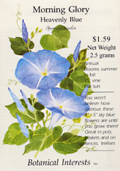 Heavenly Blue morning glory catalog