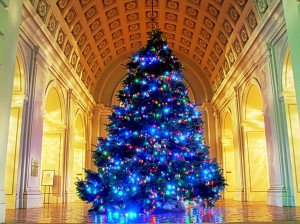 blue Christmas tree in grand hall