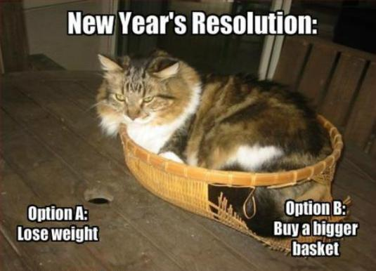 Cat New-Years-Resolution-Memes-