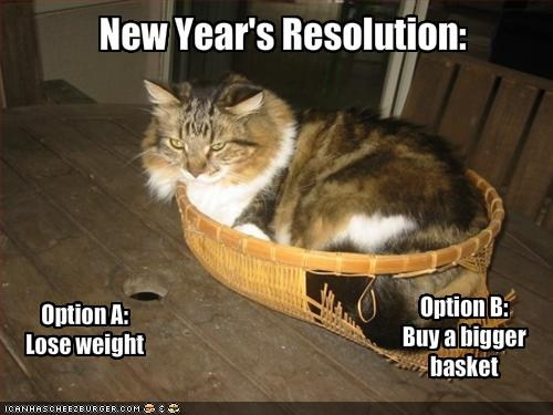 New Year's cat in basket